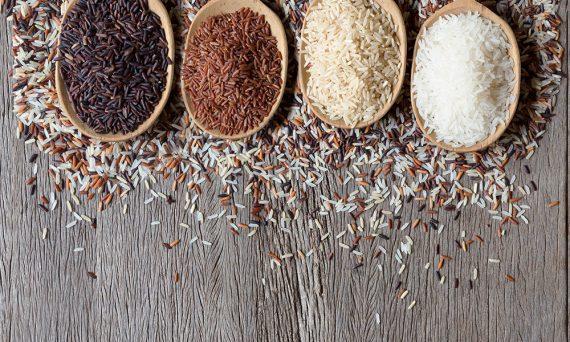 feher-rizs-vs-barna-rizs-kondis-koretkorkep